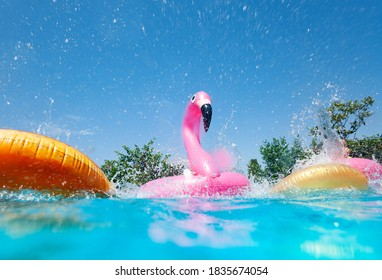 Funny action photo in the outdoor swimming pool with splashes of inflatable flamingo and doughnuts buoys rings