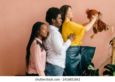 Funny african american couple and caucasian girl with chicken in her hands standing all together on pink background in studio. Odd people concept.