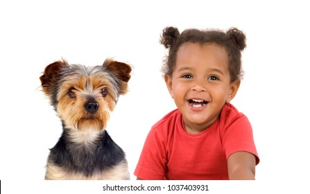Funny Afro-American child and her dog looking at camera isolated on a white background