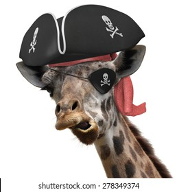 Funny animal picture of a cool giraffe wearing a pirate hat and eyepatch with crossbones