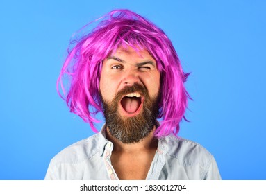 Funny bearded man in wig. Handsome bearded man with mustache in wig. Fashion concept. Barbershop. Hipster in periwig. Happy stylish man with pink hair.