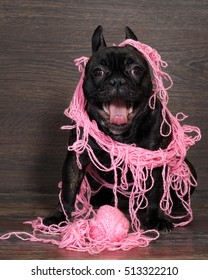 Funny black dog in pink intricate Threads