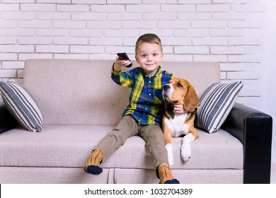 funny boy with remote control watching TV together with a dog on the couch