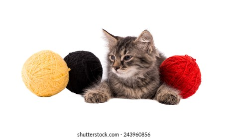 Funny brown kitten and ball of thread isolated on white