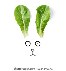 Funny bunny face made of green lettuce leaves as a ears, isolated on white background