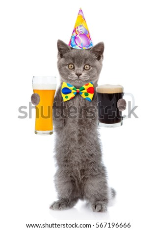 Funny Cat In Birthday Hat Holding Dark And Light Beer Isolated On White Background