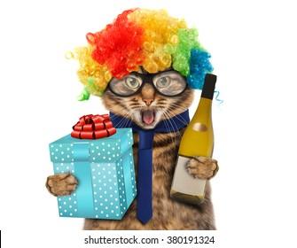 Funny cat in costume clown.