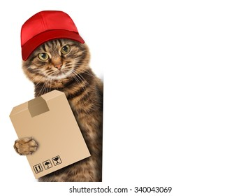 Funny cat - delivery service. Postman delivering a big package.