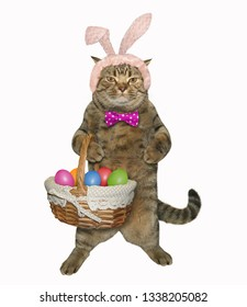 The funny cat in easter bunny ears holds a basket of colorful eggs. White background.