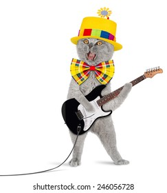 funny cat with electric guitar