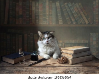 Funny cat with glasses sits at a table in the library