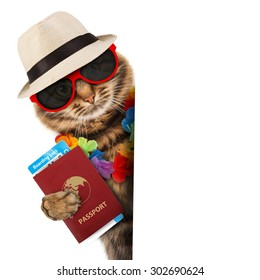 Funny cat with passport and airline ticket , isolated on white background. It is going on vacation.