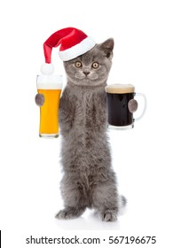 Funny cat in red christmas hat holding dark and light beer. isolated on white background