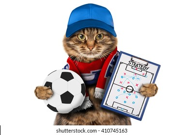 Funny cat with soccer ball on white background. Scarf of France.  It has a strategy of match. Football theme.