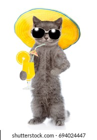 Funny cat with sunglasses holds tropic cocktail. isolated on white background.