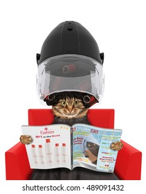 Funny cat under the drying hood reading a magazine on white background. In a beauty salon.