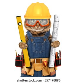 Funny cat is wearing a suit of builder. Craftsman on the white background. It is holding a builder's level and project plan.