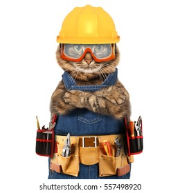 Funny cat is wearing a suit of builder. Craftsman on the white background.