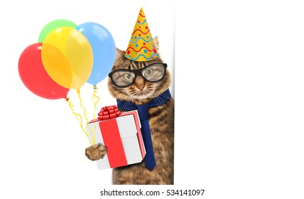 Funny cat is wearing a suit of clown and holding balloons and gift.