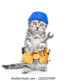 Funny cat worker with toolbelt and wrench.  Isolated on white background
