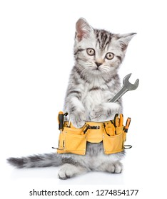 Funny cat worker with toolbelt and wrench looking at camera.  Isolated on white background