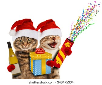 Funny cats in christmas hats with present, wine, and petard