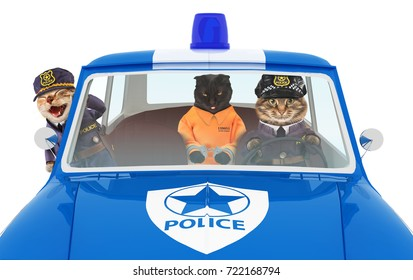 Funny cats go to the police station. Two policemen and prisoner in orange jumpsuit.