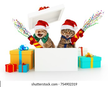 Funny cats with petards jump out of box. Christmas surprise.