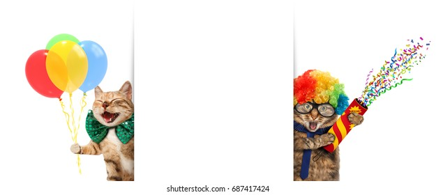 Funny cats are wearing clown's costume and holding balloons and petard. White label for text.