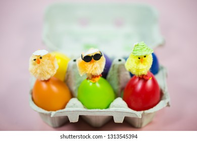 funny chicks on colorful eggs in eggbox, pink background