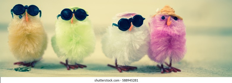 Funny chicks in a row
