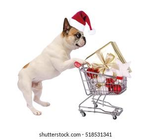 Funny christmas bulldog with shopping cart