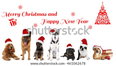 funny christmas dogs merry christmas and happy news year