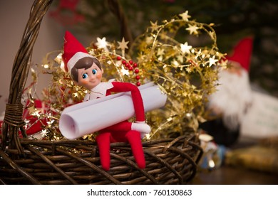 Funny Christmas dwarf toy with rolled paper sitting on the basket near Christmas tree, Preparations for holiday season and celebration.
