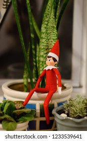 Funny Christmas toy elf hiding among home flowers. American christmas traditions. Xmas activities for family with kids.