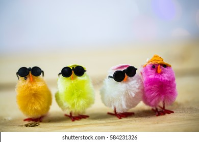 Funny colorful chicks