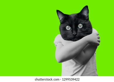 Funny contemporary art collage. Boy body hugging himself and cat head. Concept of loneliness. Green background.