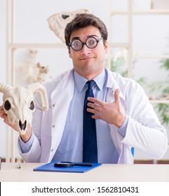Funny crazy professor studying animal skeletons