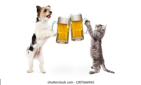 Funny dog and cat celebrating together by cheering with full glasses of beer