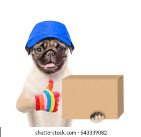 Funny dog delivering a big package and showing thumbs up. isolated on white background
