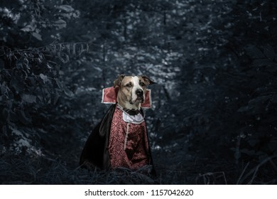 Scary Story Images, Stock Photos & Vectors   Shutterstock