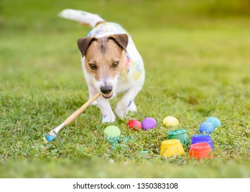 Funny dog with paintbrush making DIY Easter eggs on grass