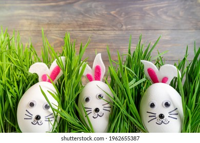 Funny easter eggs cute bunny in the grass. Happy Easter background. Festive Easter compositions with cute rabbits eggs. Creative egg decoration ideas with easter bunny
