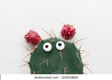 Funny face prickly pear cactus on a white background, prickly pear fruit, Opuntia ficus-indica