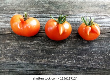 Funny friends tomatoes. Deformed aberrant abnormal anomalous red tomatoes on a white background. Deformation due to cold weather during ovulation. Strange forms grown mutated cherry tomatoes.