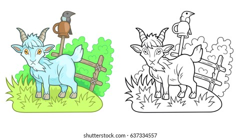 Funny goat walks on the farm