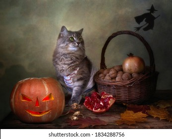 Funny Halloween cat and pumpkin