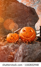 Funny halloween pumpkins on rocks with leaves and berries