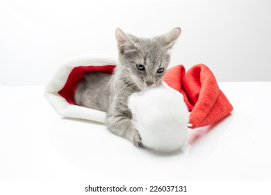 Funny kitten a cap of Santa Claus on a light background in studio
