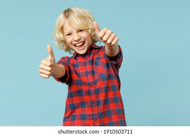 Funny little curly kid boy 10s years old in basic red checkered shirt showing thumbs up like gesture looking camera isolated on blue background children studio portrait. Childhood lifestyle concept